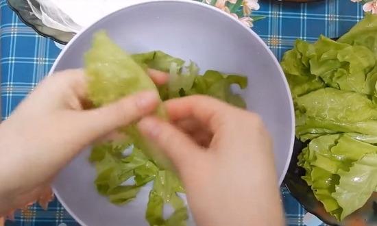 листья салата нарвать