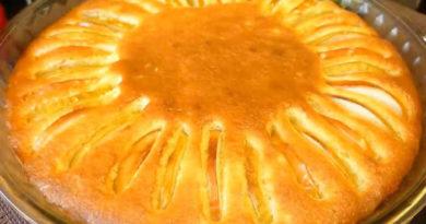 Самые простые рецепты приготовления творожной шарлотки с яблоками, быстро и незабываемо вкусно