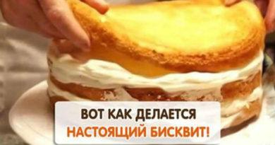 Классический бисквит