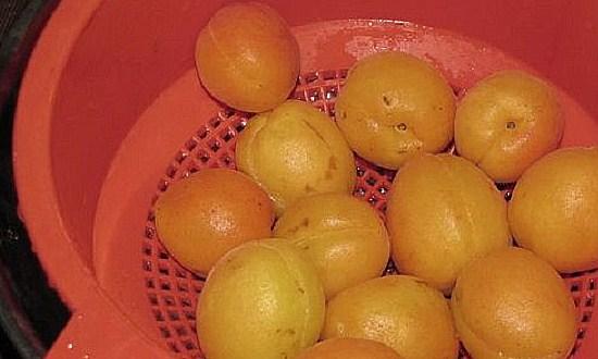 промыть и обсушить абрикосы