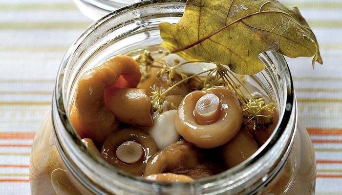 Хрустящие соленые грузди на зиму - рецепты приготовления холодным способом