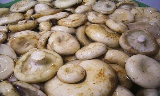 вымыть, замочить грибы