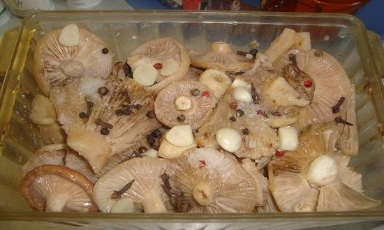 уложить грибы слоями