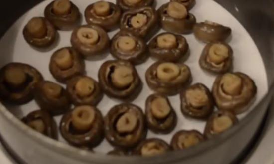 выложили первый слой грибов