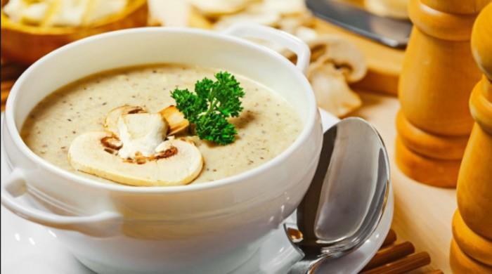 Грибной суп из замороженных грибов — рецепты самых вкусных супов