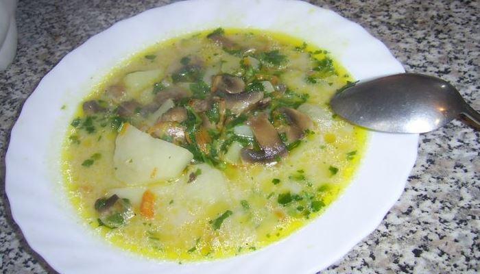 Сырный суп из плавленого сыра с курицей и шампиньонами