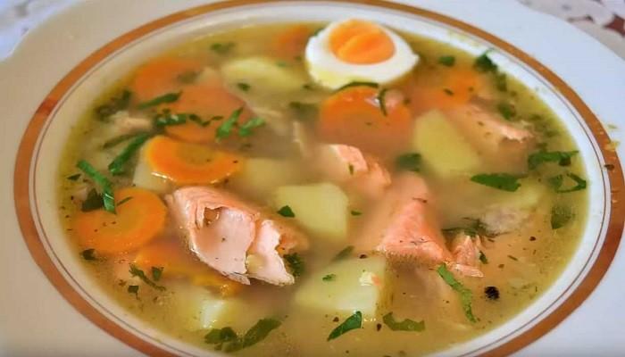 Суп из головы и хвоста семги с пшеном
