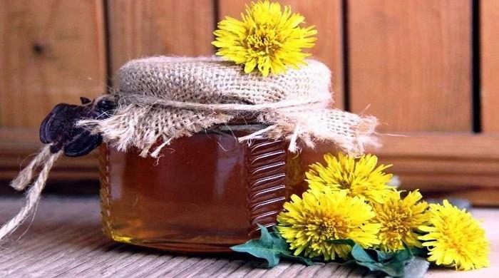 Варенье из одуванчиков — польза и вред для организма, рецепты приготовления в домашних условиях