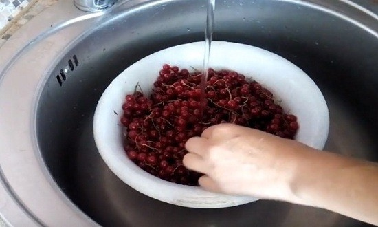 Моем красную смородину