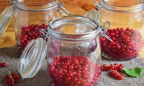 Заполняем банки ягодами