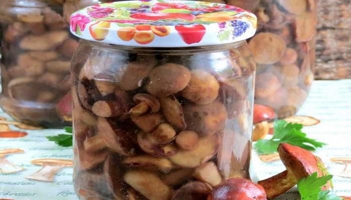 Маринуем маслята на зиму – рецепт на литр рассола