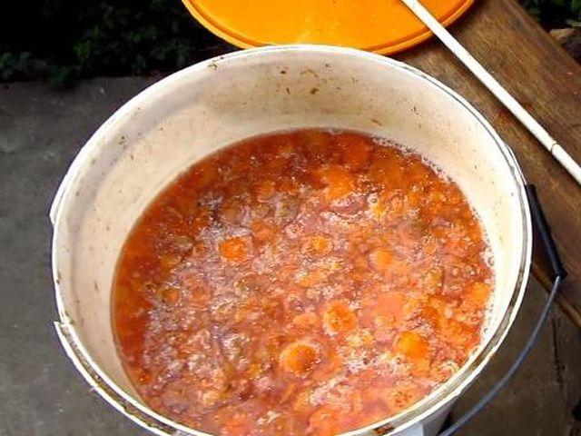 Вино из абрикосов в домашних условиях простой рецепт без дрожжей