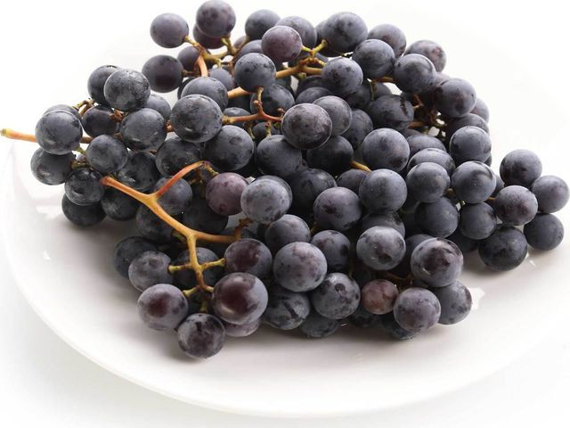 Вино из винограда своими руками — рецепт приготовления в домашних условиях